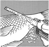 odšupinovač rýb